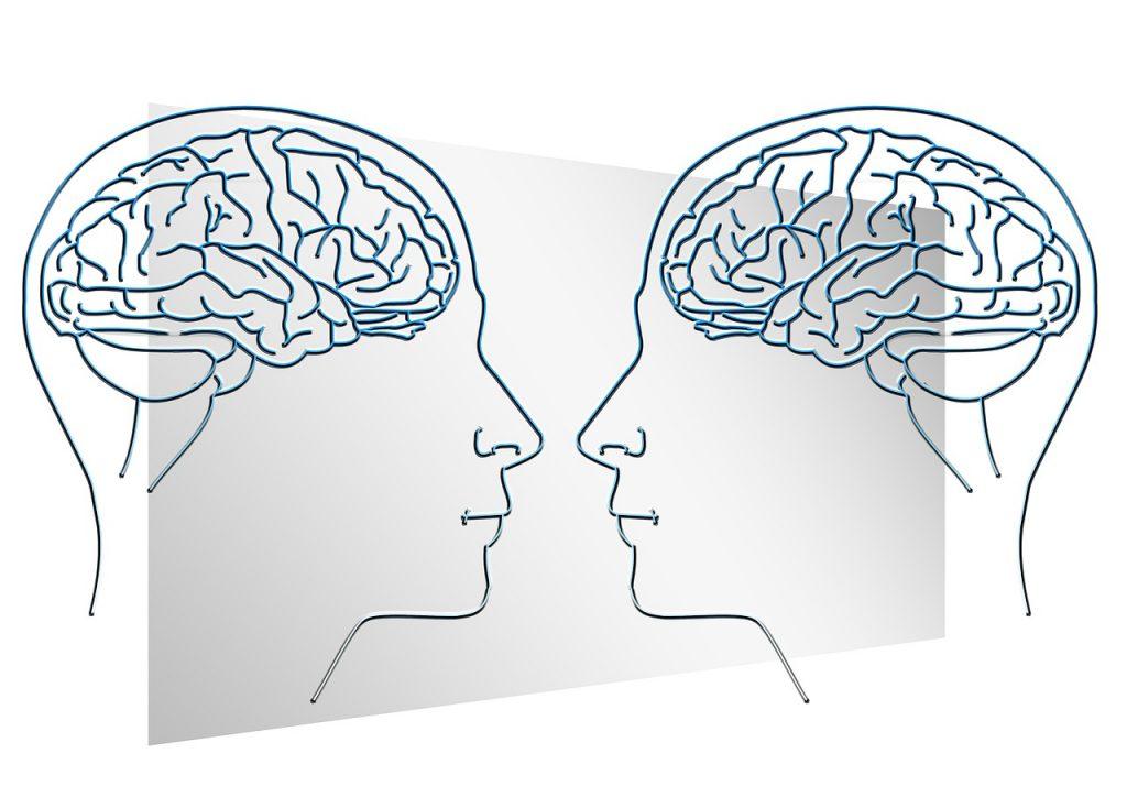 face, silhouette, brain